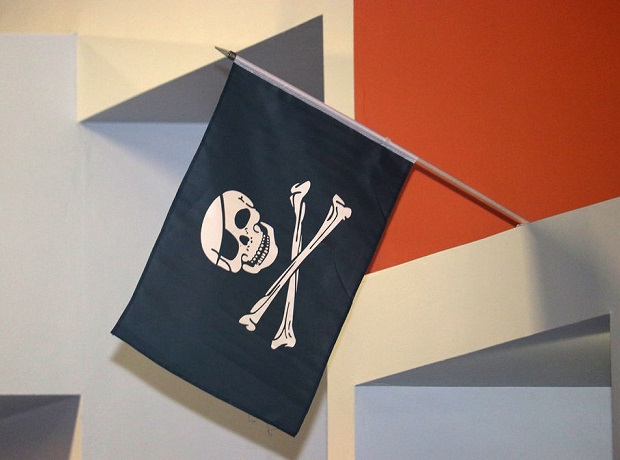 NextSpace Coworking Santa Cruz 10 Year Anniversary Pirate Flag