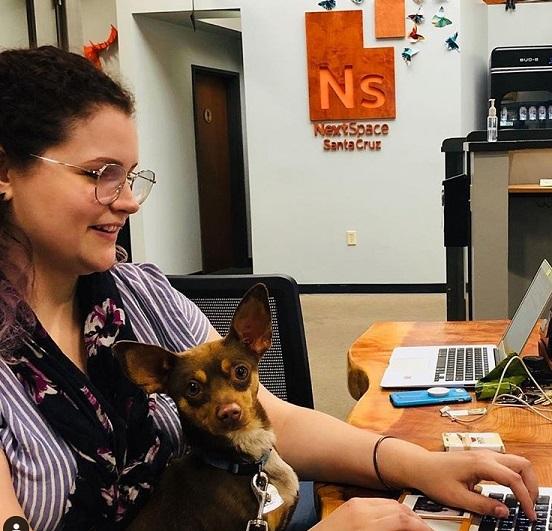 NextSpace Coworking Santa Cruz Coworking Members and Pets